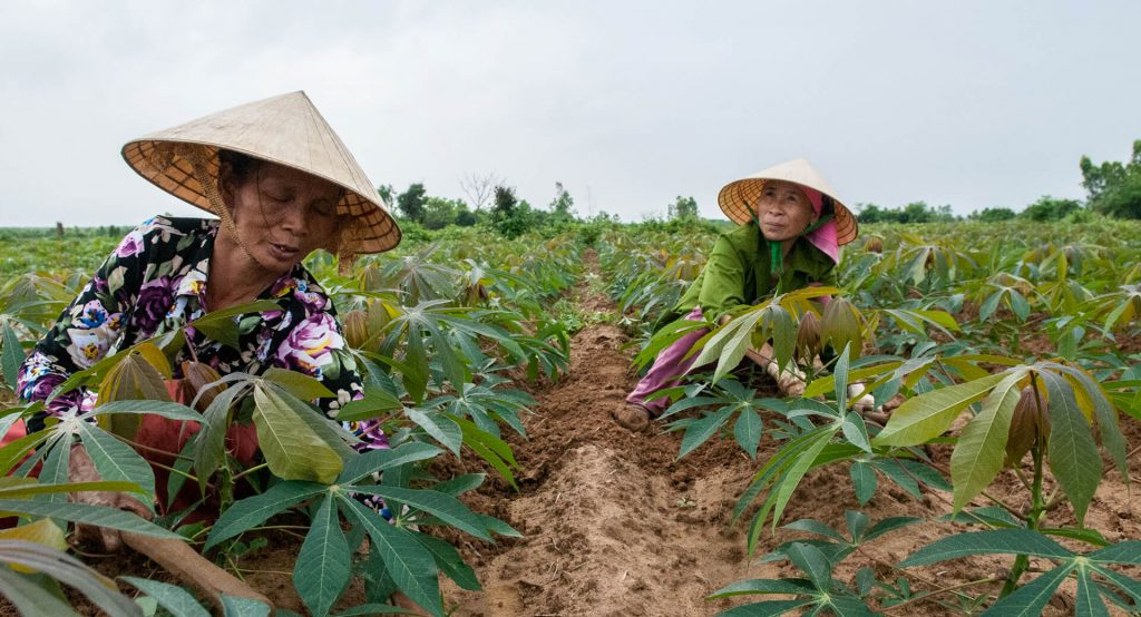 Helping Farmers in the PH